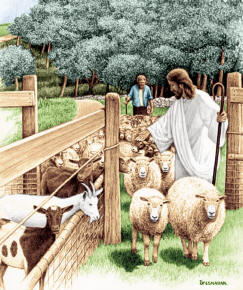 jesus-sheep-and-goats